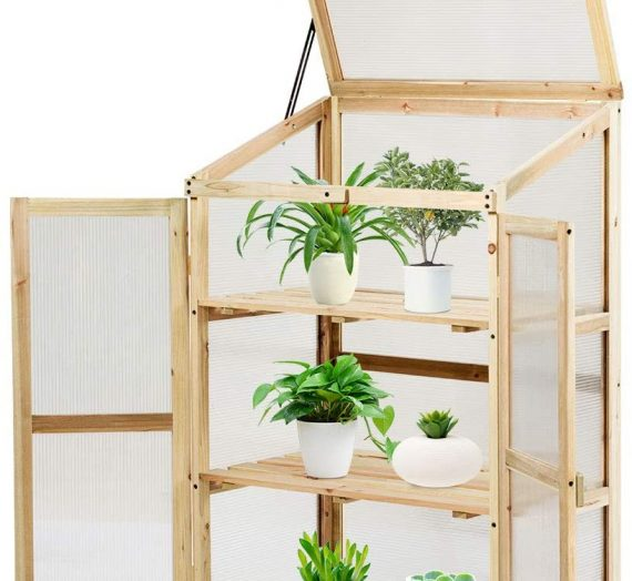 Acheter une mini serre de balcon : comment la choisir?